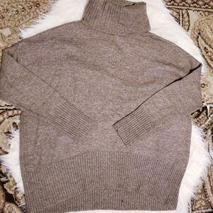 Shrinking Violet turtleneck sweater